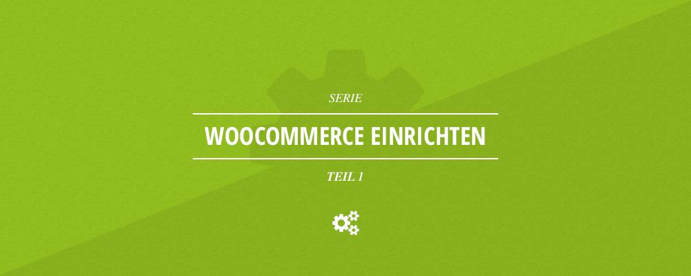 WooCommerce einrichten