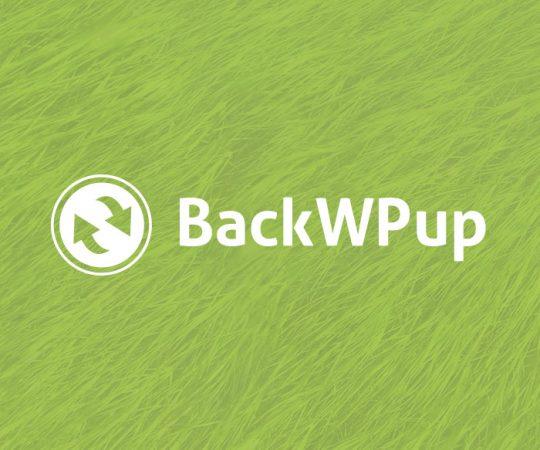 bwpup-prev