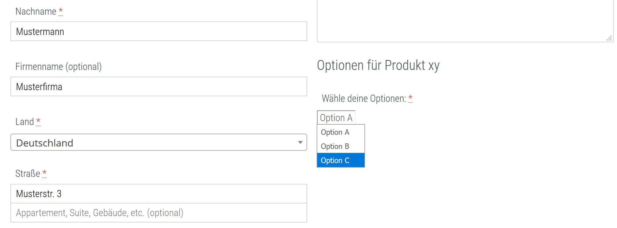 WooCommerce: Den Checkout bzw. die Kassenseite anpassen 2