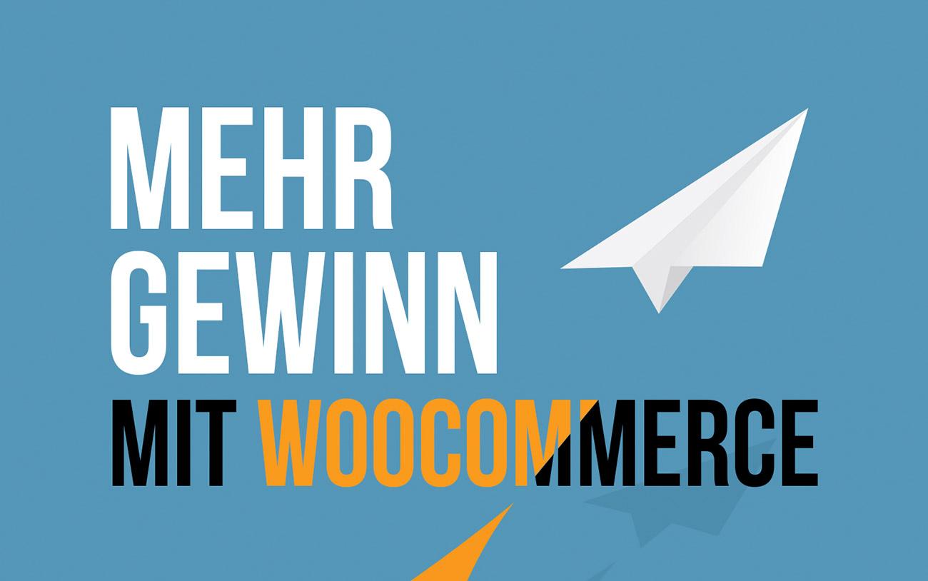 E-Book: Mehr Gewinn mit WooCommerce